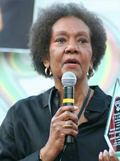 DR. FRANCES CRESS WESLING